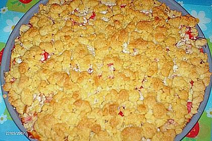 Rhabarberkuchen mit Vanillecreme und Streusel 231