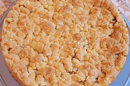 Rhabarberkuchen mit Vanillecreme und Streusel 114