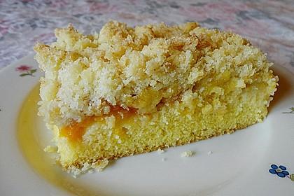 Marillenkuchen mit Kokosstreusel