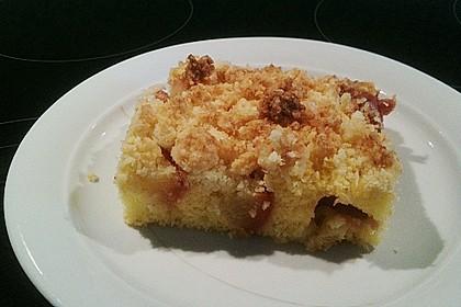 Marillenkuchen mit Kokosstreusel 15