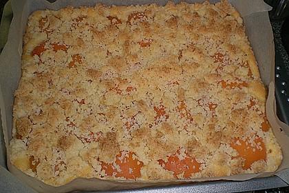 Marillenkuchen mit Kokosstreusel 12