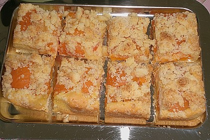 Marillenkuchen mit Kokosstreusel 14