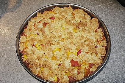 Marillenkuchen mit Kokosstreusel 13