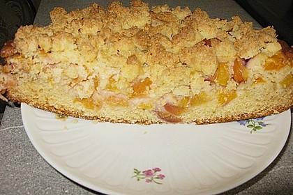 Marillenkuchen mit Kokosstreusel 10