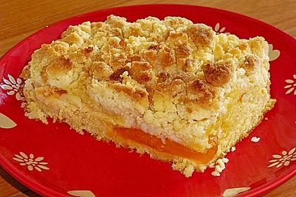 Marillenkuchen mit Kokosstreusel 7