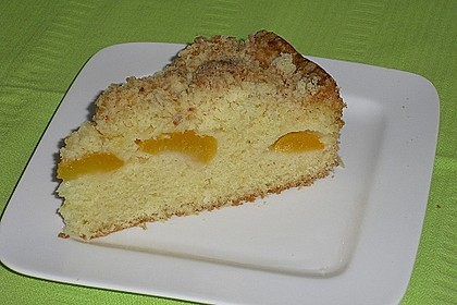 Marillenkuchen mit Kokosstreusel 4