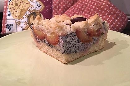 Zwetschgenkuchen mit Mohnquark + Butterstreuseln 20