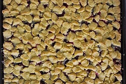 Zwetschgenkuchen mit Mohnquark + Butterstreuseln 24