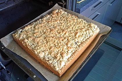 Zwetschgenkuchen mit Mohnquark + Butterstreuseln 18