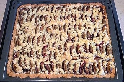 Zwetschgenkuchen mit Mohnquark + Butterstreuseln 32