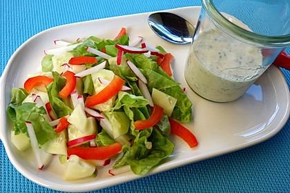Salatsoße auf Vorrat 3