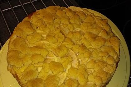 Omas Quark-Apfel-Streusel-Torte 24