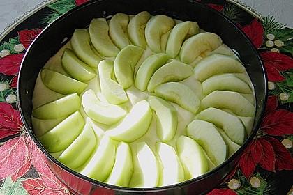 Omas Quark-Apfel-Streusel-Torte 17