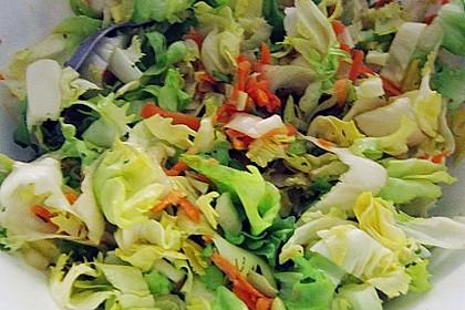 Endivien-Möhren Salat 11