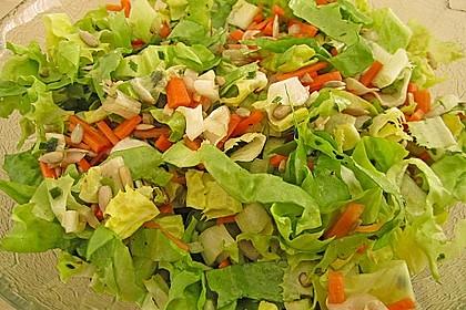 Endivien-Möhren Salat 5
