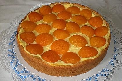 Creme fraiche Torte 8