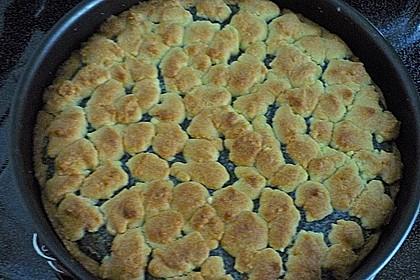 Pudding-Mohn-Kuchen 8