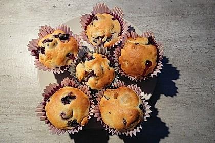 Blaubeer-Buttermilch Muffins (Bild)