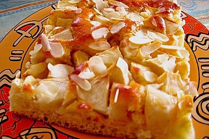 Schlanker Apfelkuchen vom Blech 7