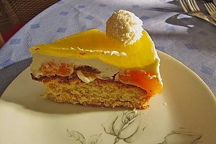 Mandarinen-Kokos Torte 7