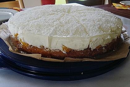 Mandarinen-Kokos Torte 5