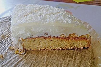 Mandarinen-Kokos Torte 9