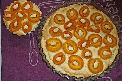 Tarte aux abricots mit Mandelflan 2