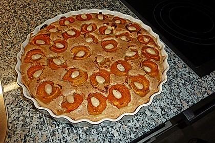 Tarte aux abricots mit Mandelflan 1