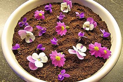 Blumenerde mit Quark (Bild)