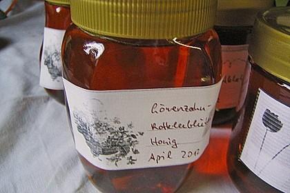 Löwenzahn-Rotkleeblüten-Honig 1