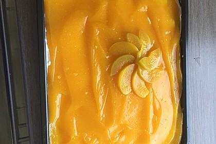 Solero Dessert 58