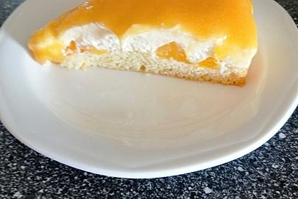 Solero Dessert 50