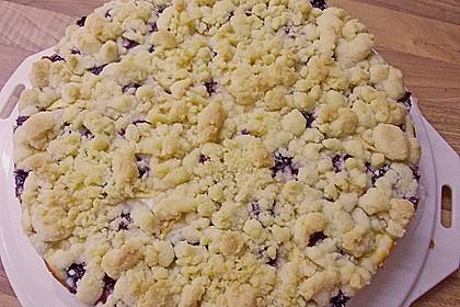 Apfel-Heidelbeer-Streuselkuchen 8
