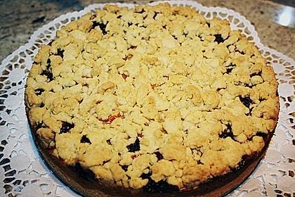 Apfel-Heidelbeer-Streuselkuchen 7