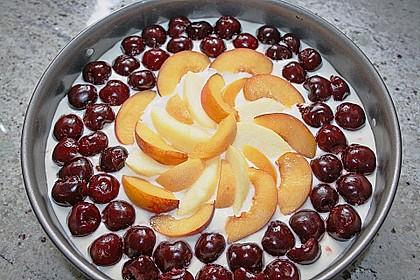 Apfel-Heidelbeer-Streuselkuchen 14