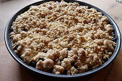 Apfel-Heidelbeer-Streuselkuchen 10