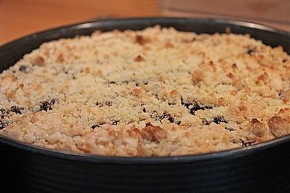 Apfel-Heidelbeer-Streuselkuchen 9