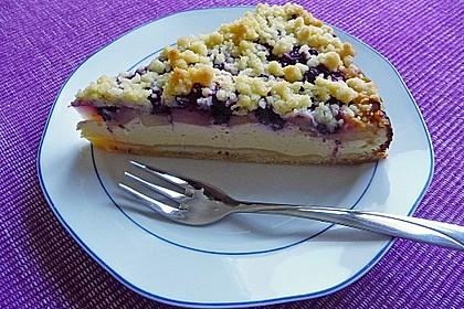 Apfel-Heidelbeer-Streuselkuchen 4