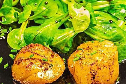 Jakobsmuscheln auf Feldsalat gebettet 1