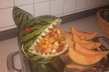 Melonen-Hai 95