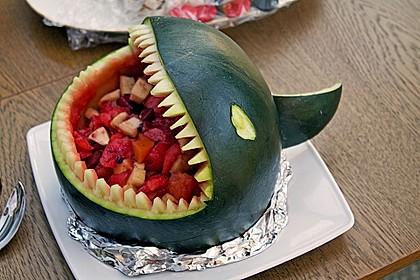 Melonen-Hai 20
