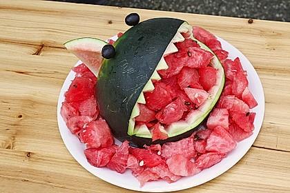 Melonen-Hai 91