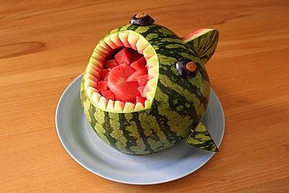 Melonen-Hai 40
