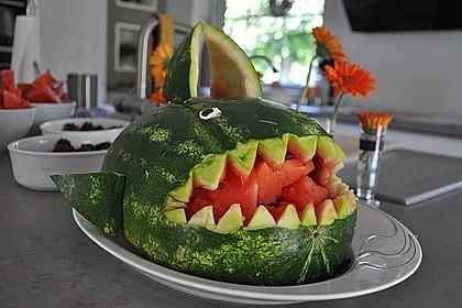 Melonen-Hai 58