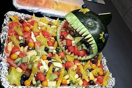 Melonen-Hai 31