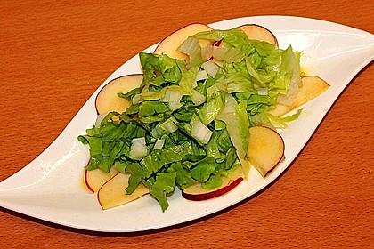 Apfel-Endivien-Salat mit Senfdressing 11