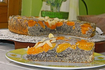 Waldviertler Marillenkuchen (Aprikosenkuchen) 5
