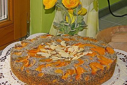Waldviertler Marillenkuchen (Aprikosenkuchen) 6