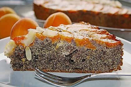 Waldviertler Marillenkuchen (Aprikosenkuchen) 2