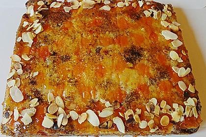 Waldviertler Marillenkuchen (Aprikosenkuchen) 9